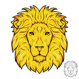 Lion Head Logo Photos stock