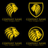 Lion Head Logo / Icon Golden Version and Black Background Stock Photo
