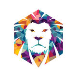Lion head  logo template creative illustration Animal wild cat face graphic sign Pride strong power Stock Photos