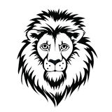 Lion head logo. Vector illustration, isolated on white background. Stock Images