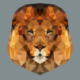 Lion head low. Poly icon vector Stock Images