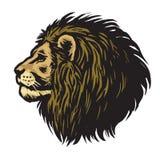 Lion Head Mascot Logo Vector puissant Images stock