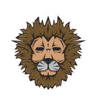 Lion head mascot tattoo face Stock Image