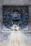 The lion head medieval fountain in Italy royalty free stock photos