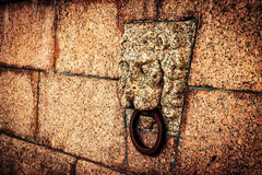 Lion head with metal ring Royalty Free Stock Image