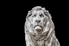Lion head munich Royalty Free Stock Images