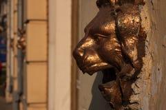 Lion head Stock Images