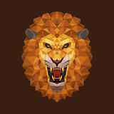 Lion head polygon geometric, Vector illustration Royalty Free Stock Photography