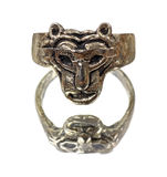 Lion head ring on mirrored surface Stock Photography