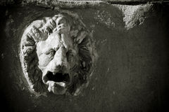 Lion head sculpture. Detail of fountain Royalty Free Stock Photo