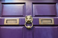 A brass door knocker on a purple door. Royalty Free Stock Image