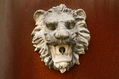 Lion-head-shaped stone gargoyle on rusted steel plate Stock Image