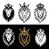 Lion2. Lion head in signs and labels Royalty Free Stock Photography
