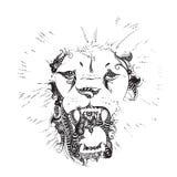 Lion head silhouette Stock Photos