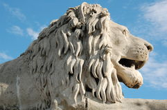 Lion Head Statue. Lion at Buda side at Chain bridge in Hungary royalty free stock photography