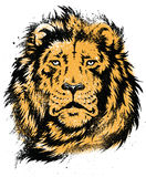 Lion Head Stencil Vector Arkivfoton