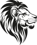 Lion head symbol Royalty Free Stock Images