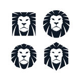 Lion head template Royalty Free Stock Photos