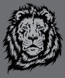 Lion Head Vector Royaltyfri Fotografi