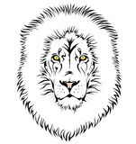 A lion head Royalty Free Stock Images