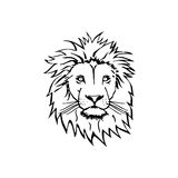 Lion Head Vector sketch Royalty Free Stock Photography