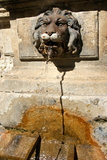 Lion head water fountain Stock Photo