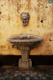 Lion Head water fountain stock images