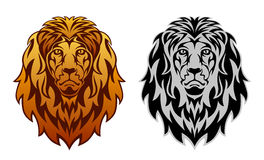 Lion head Stock Images
