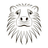 Lion head. Wild lion head graphic illustration. Design element Royalty Free Illustration