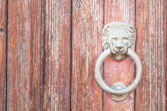 Lion head on wood. Particular of a knocker Stock Images