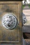 Lion heads stock image