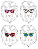 Lion heads in sunglasses Royalty Free Stock Images