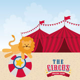 Lion icon. Circus and Carnival design. Vector graphic. Circus and carnival concept represented by Lion icon. Colorfull illustration Royalty Free Stock Photos
