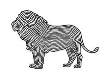 A lion illustration icon in black offset line. Fingerprint style. For logo or background design Stock Photos