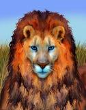 Lion Illustration observé par bleu Photographie stock libre de droits