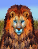 Lion Illustration observé par bleu Photographie stock libre de droits
