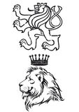 Lion illustration Stock Image