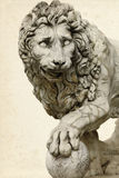 Lion In Florence Stock Image