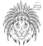 Lion in the Indian roach. Indian feather headdress of eagle. Stock Images