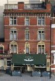 Lion Inn branco fotos de stock