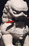 Lion japonais photographie stock libre de droits