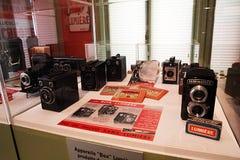 Lion kamery muzeum obraz stock