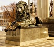 Lion sculpture— a kind of predatory mammals, the largest cat. stock photos