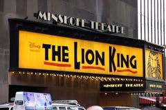 The Lion King Stock Photos