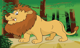 Lion king Royalty Free Stock Photos