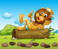 A lion king above a trunk Royalty Free Stock Photo