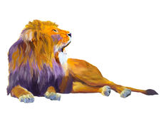Lion King Royalty Free Stock Photo