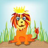 Lion king of the jungle Royalty Free Stock Images
