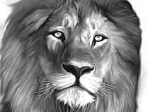 Lion the King of the Jungle Monochrome vector illustration