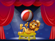 A lion king performing on stage Royalty Free Stock Photos